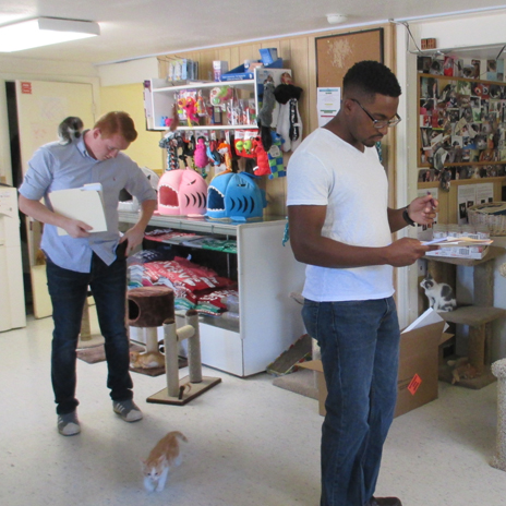 Summer interns begin pro bono architectural project